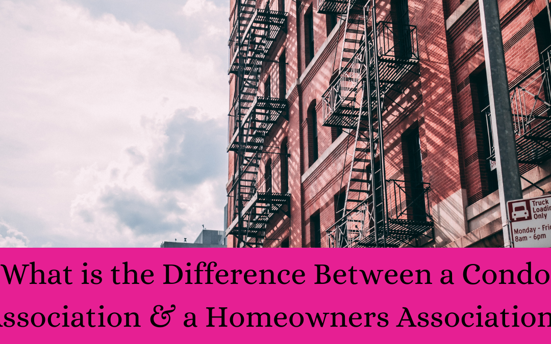 Difference between condo association and homeowners association